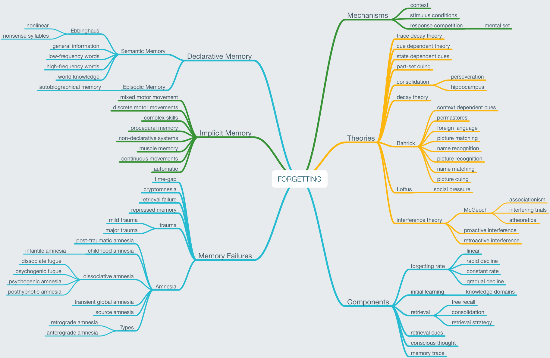 Mind map about Forgetting