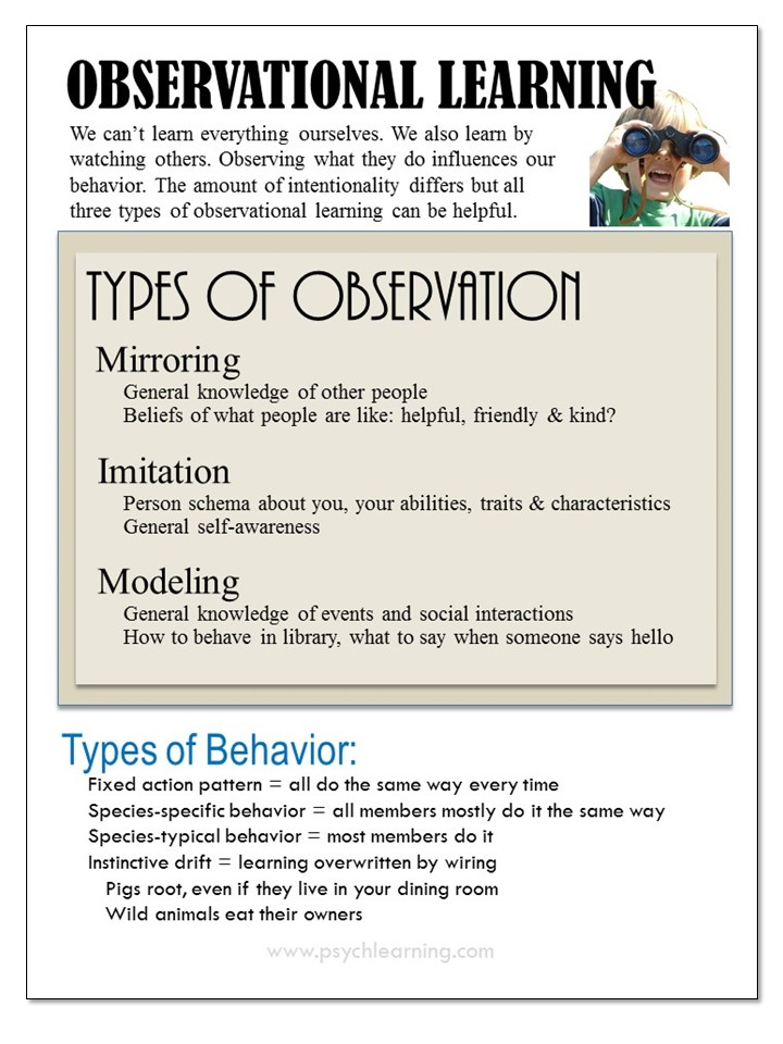 Infographic about Observational Learning