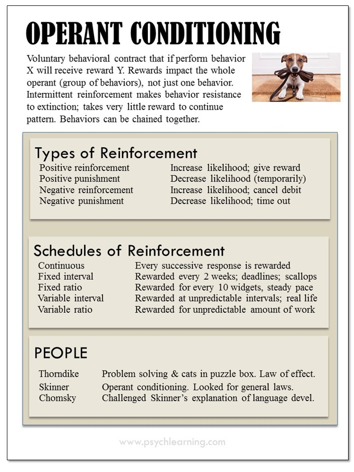 Infographic about Operant Conditioning