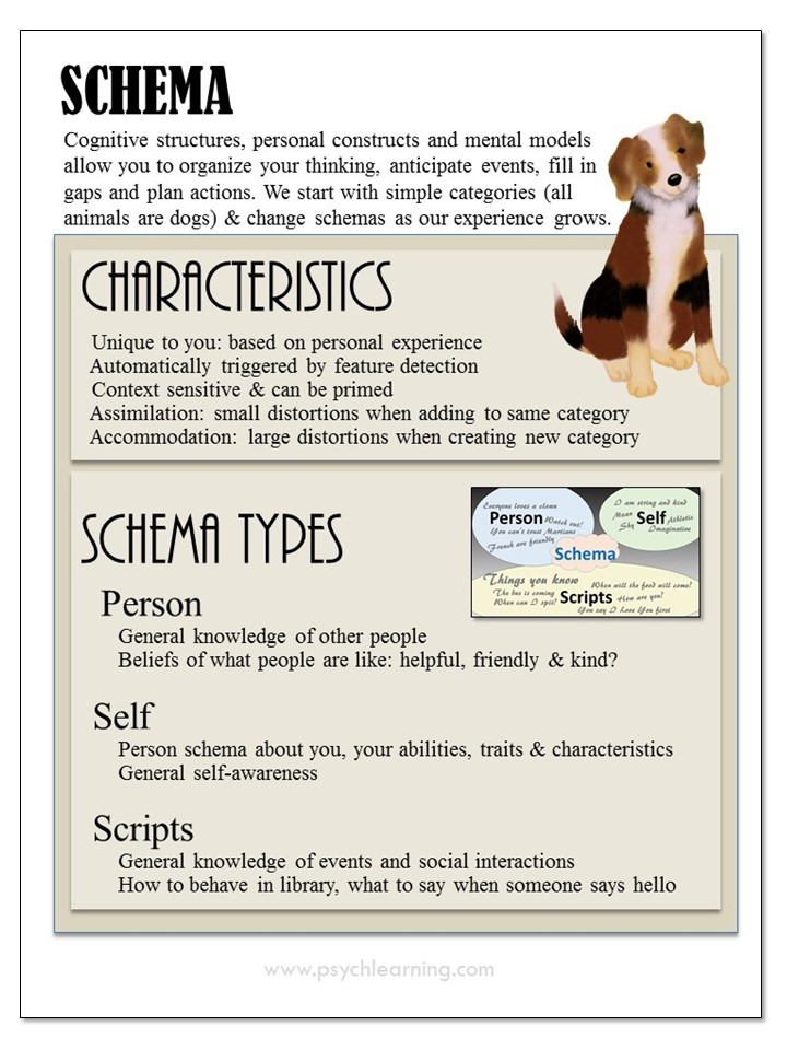 Infographic about Schemas