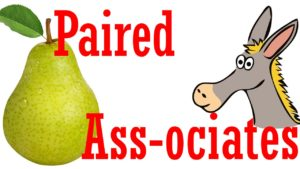 Paired Associates